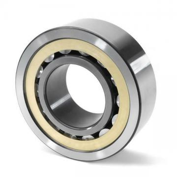 SL182919 INA Cylindrical Roller Bearing