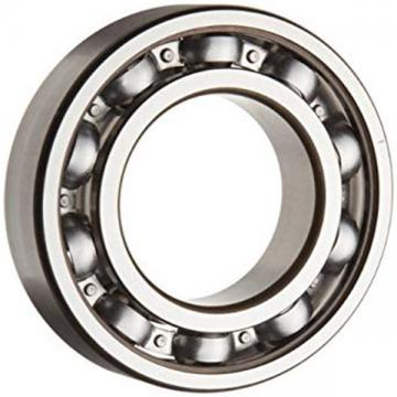 INA 6304ZZ SINGLE ROW BALL BEARING